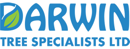 Darwin Tree Surgeon Specialists Ireland